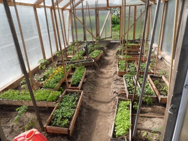 Месяц садовода и огородника