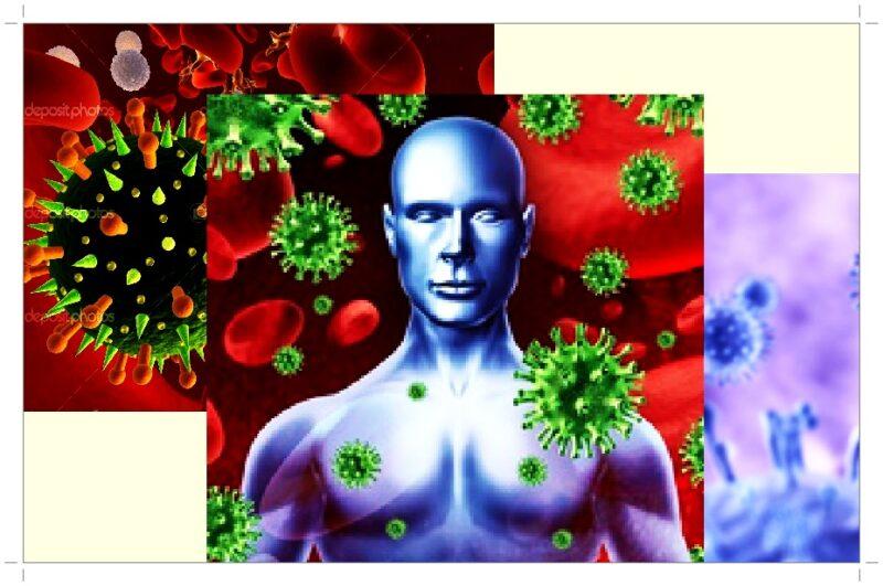 Респираторные вирусные инфекции и их профилактика