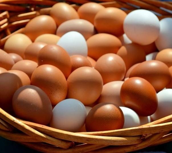 Можно ли есть яйца каждый день при повышенном холестерине