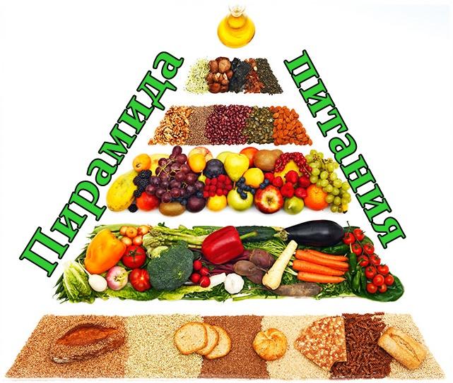 Из чего состоит пирамида питание полезные продукты