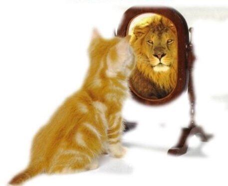 Как самооценка влияет на личность человека