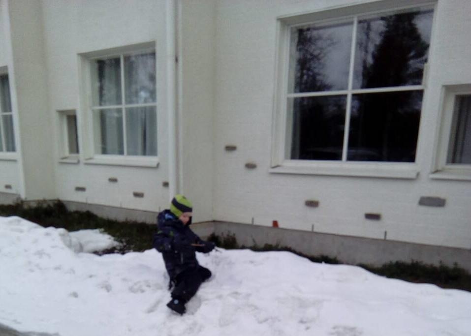 Территория детского сада и организация прогулок в детском саду