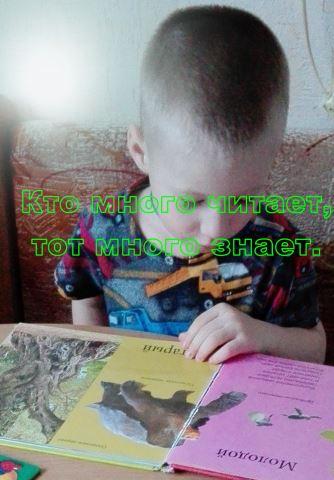 Как помочь ребёнку полюбить книгу