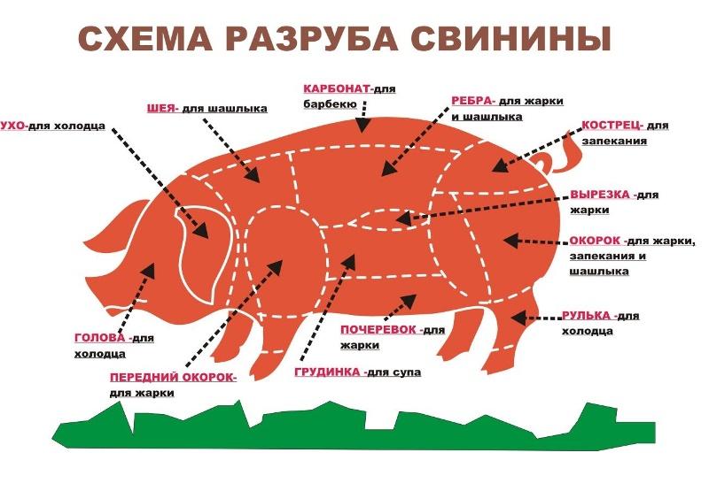 Как лучше приготовить мясо свинины