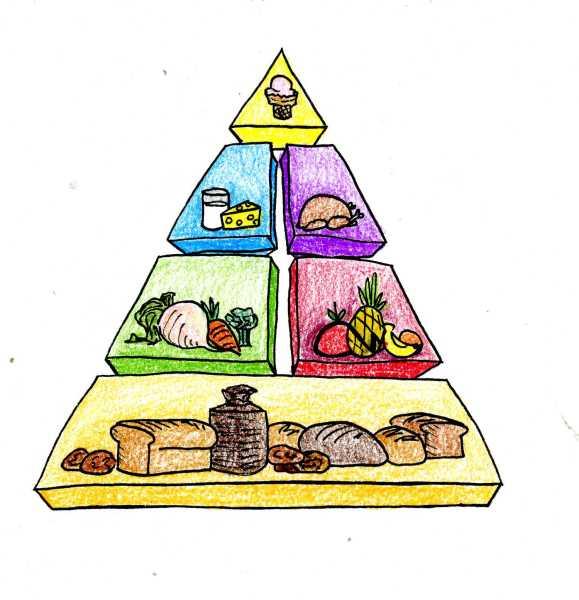 Общие принципы правильного питания после 20 лет Как построить из пирамиды меню