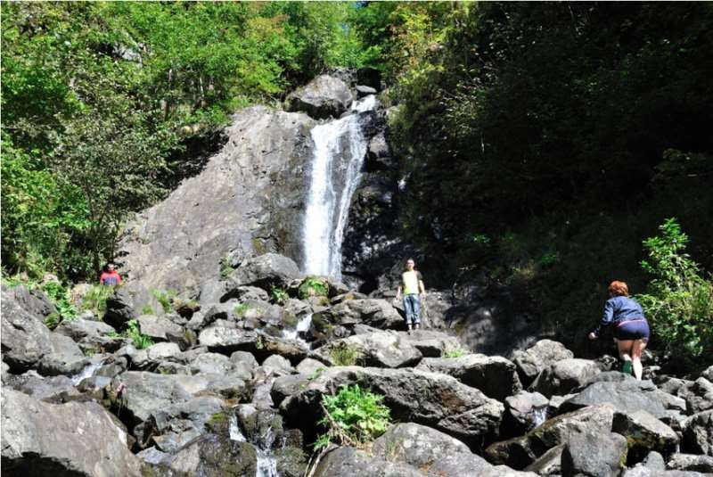Экскурсия на озеро Рица отзывы